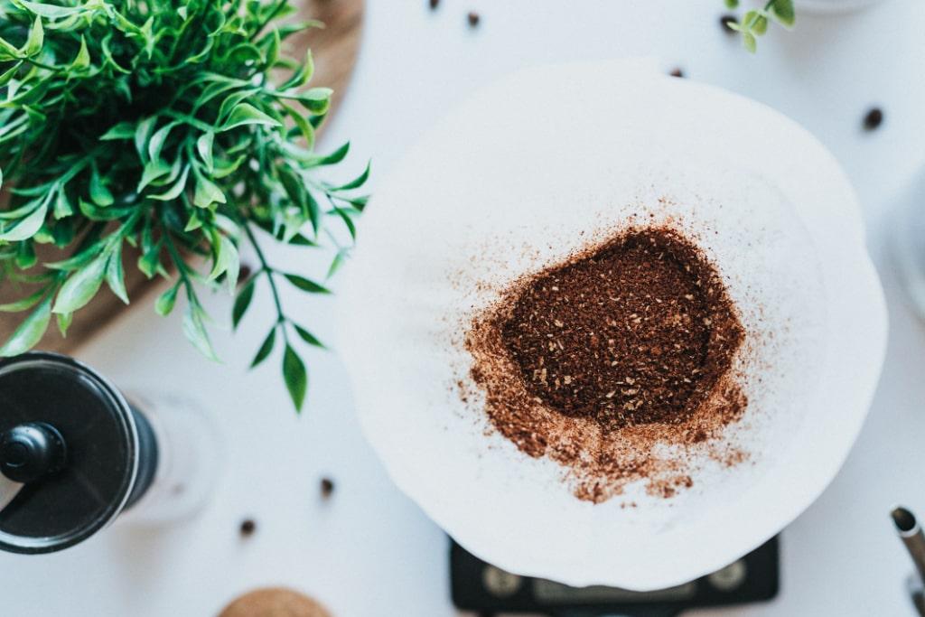 Hausmittel zum Düngen: Kaffeesatz